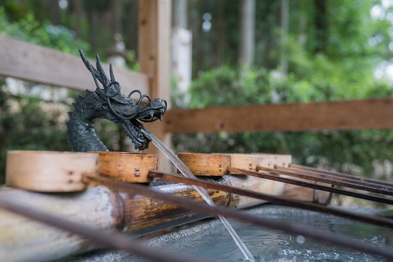 モネの池(根道神社の池)注意
