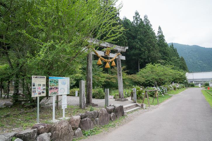 モネの池(根道神社の池)鳥居
