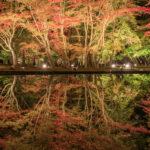 曽木公園(逆さ紅葉)6