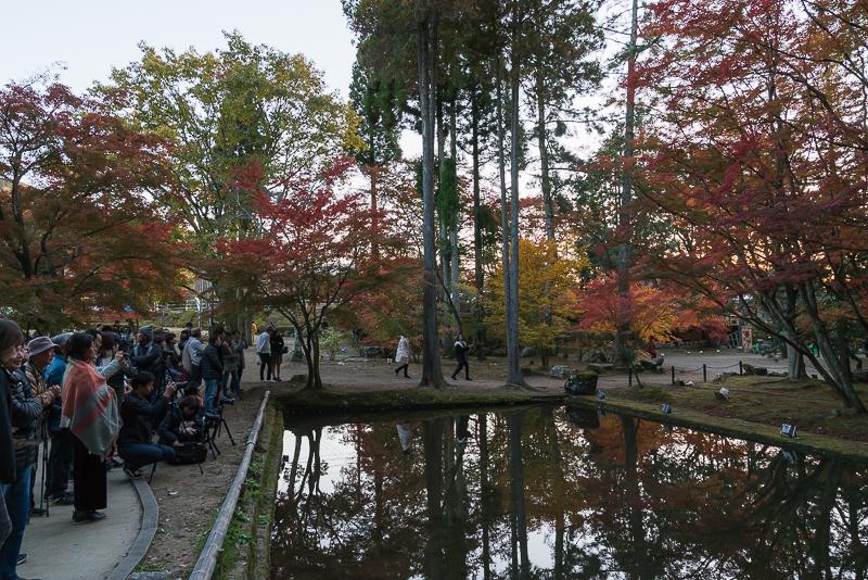 曽木公園の逆さ紅葉注意