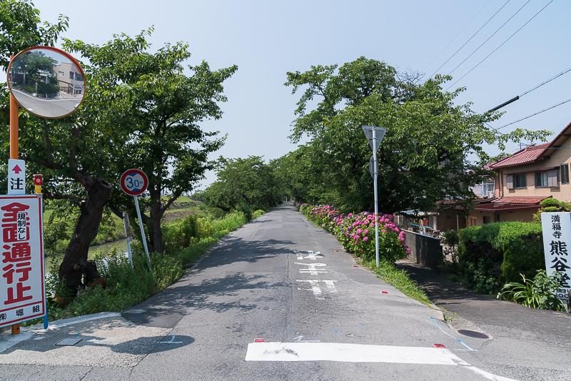 墨俣犀川堤のあじさい街道 注意