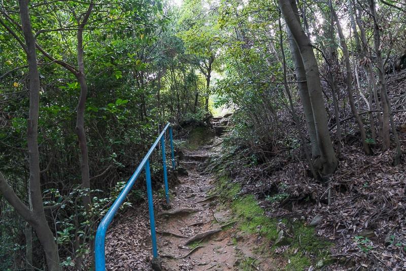 白山神社(小牧市)撮影スポット7
