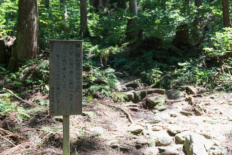 株杉の森(21世紀の森公園)蕪山入り口