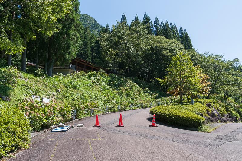 株杉の森(21世紀の森公園)道中
