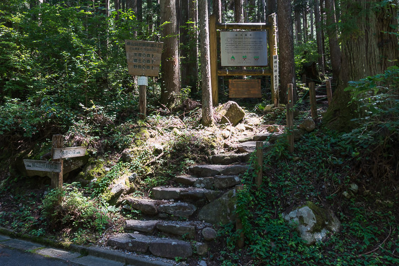 株杉の森(21世紀の森公園)入り口