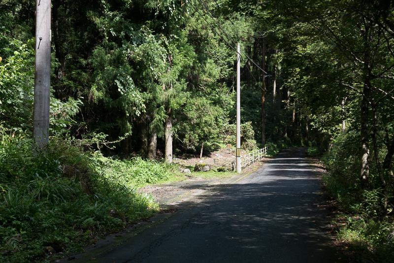 円原川の光芒撮影スポット3