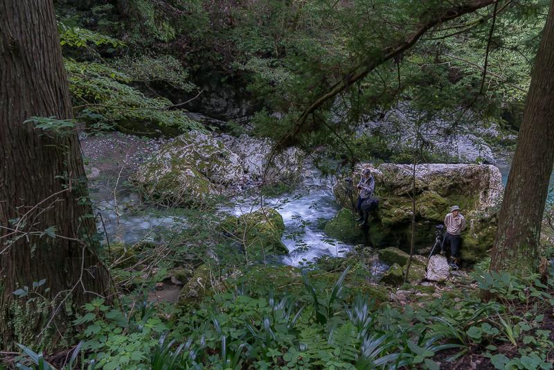 円原川の光芒(山県市)撮影スポット2