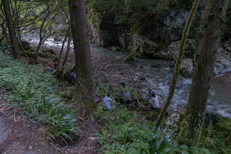 円原川の光芒(山県市)撮影スポット3