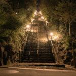 月見の森(夜景)1