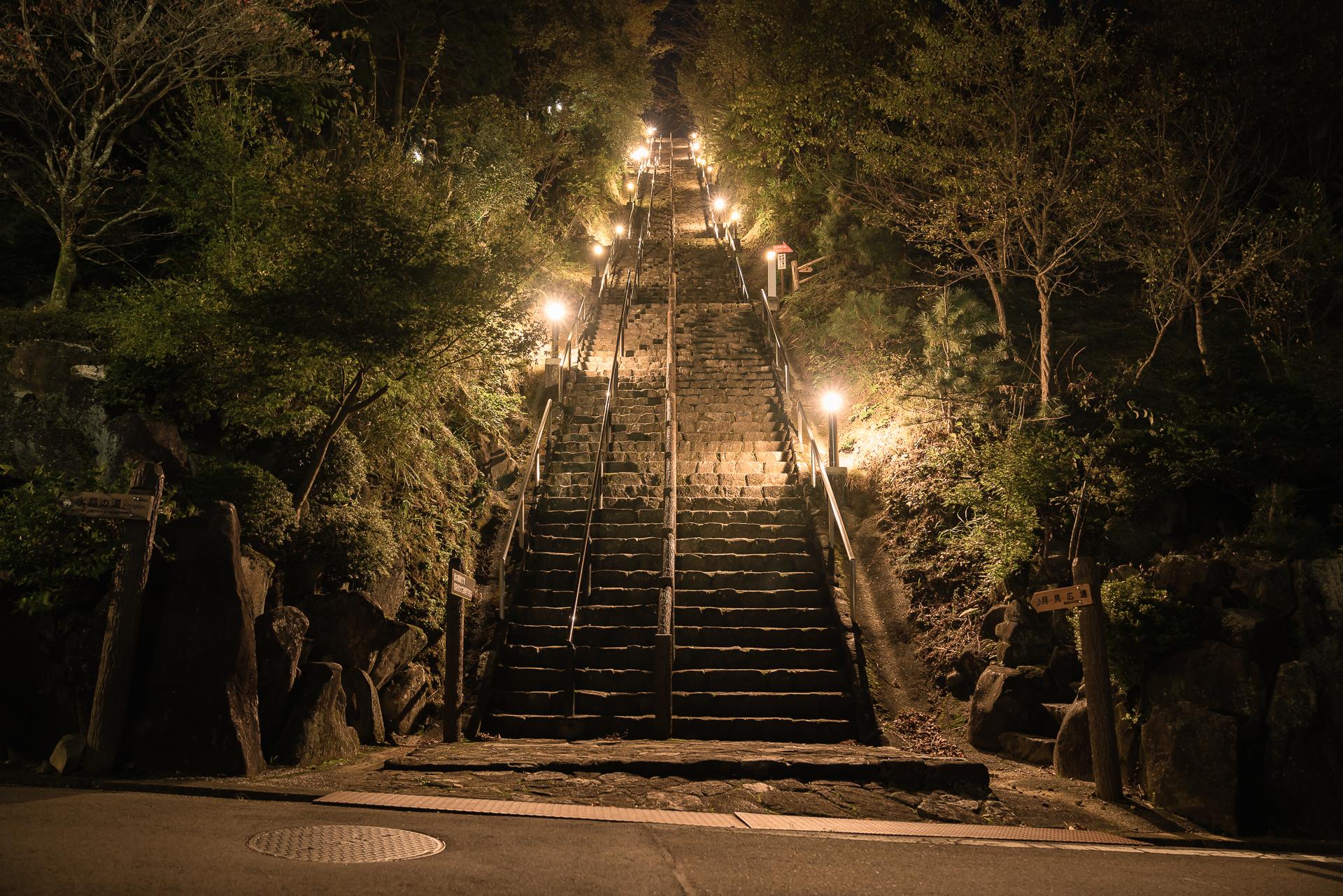 岐阜県「月見の森(海津市)」の行き方と撮影スポット