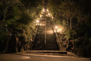 月見の森(夜景)