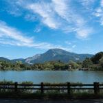 三島池(伊吹山)5