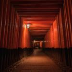 伏見稲荷大社(千本鳥居)5