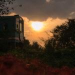 樽見鉄道と彼岸花