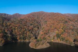姉川ダム浮島