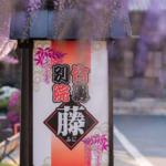 竹鼻別院(藤)3